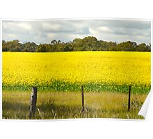 Fields and fields Poster