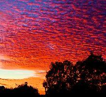 Autumn daybreak is glorious by Craig A. White (Australia)