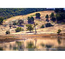 Lake Moyanup in late summer Photographic Print