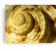 Spiral Pastry Canvas Print