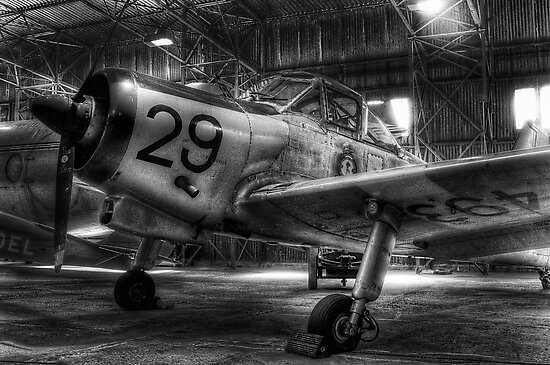Percival Provost T.1 WV493 by Don Alexander Lumsden (Echo7)