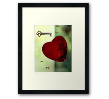 The Key Framed Print