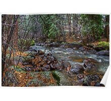 Mountain Stream - Rocky Mountain National Park Poster
