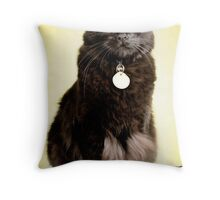 Another One? Throw Pillow