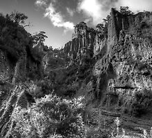 Putangirua Pinnacles view 1 - Cape Palliser, New Zealand by Phil McComiskey