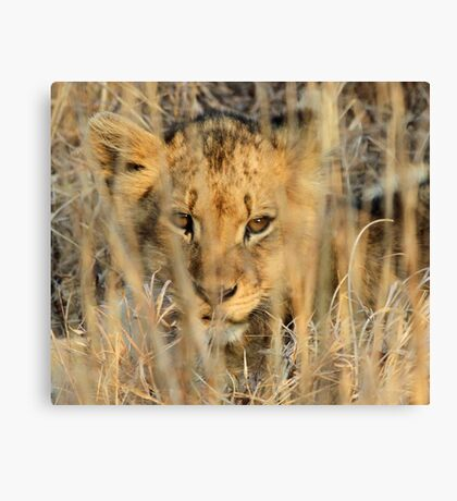 Great camouflage! Canvas Print