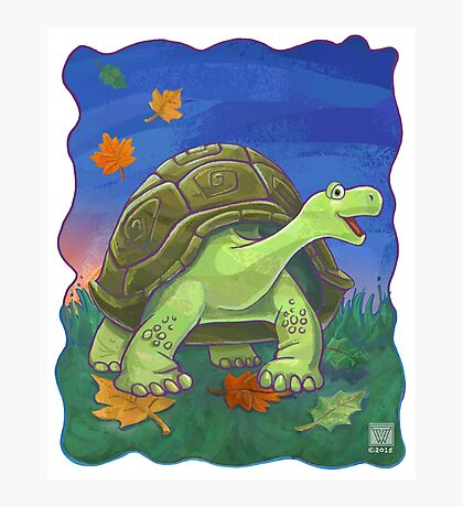 Animal Parade Tortoise Photographic Print