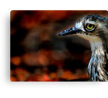 BIRD EYE Canvas Print