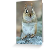 More, please! Greeting Card