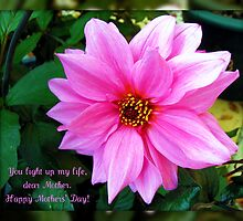 Pink Dahlia Mothers' Day Card by BlueMoonRose