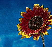 Sun Flower Sketch Art Texture by ArtByAnnastasia