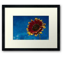 Sun Flower Sketch Art Texture Framed Print