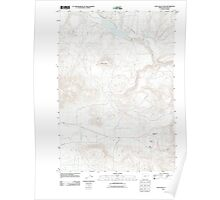USGS Topo Map Oregon Cow Valley East 20110831 TM Poster