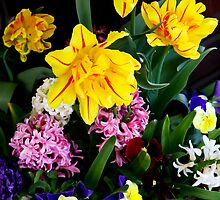 Spring flowers by torishaa