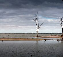 Lake Bonney by Andrew Dickman