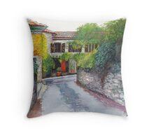 Porte Orange Throw Pillow