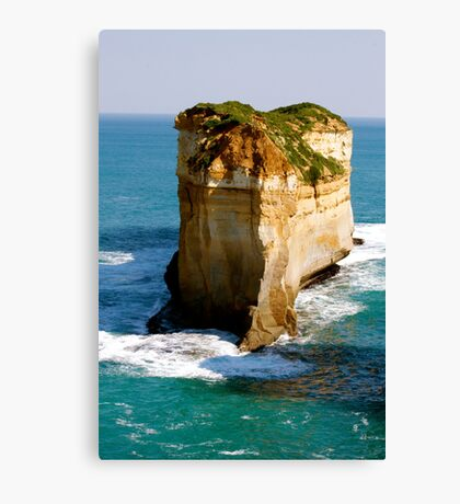 down south Canvas Print
