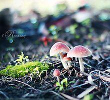 Mushroom with icing :) by fRantasy