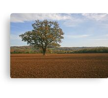 Middle England Canvas Print