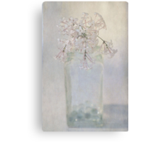 Lilac Flower Canvas Print