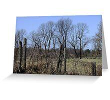 Ragged Fences Greeting Card