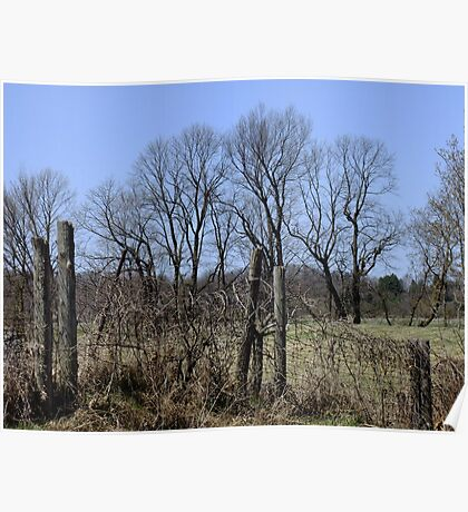 Ragged Fences Poster