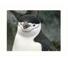 Chinstrap penguin 15 Art Print