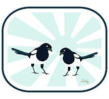 magpie (series) Photographic Print