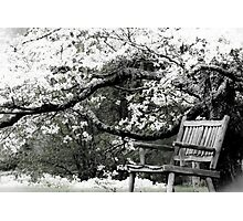 Springtime Relaxation Photographic Print