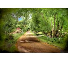 Paech Road - Paechtown, Hahndorf, South Australia Photographic Print