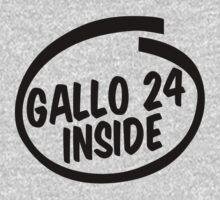 gallo 24 inside by hoddynoddy