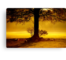 """""""IN THE SHADE OF THE OAK"""" Canvas Print"""