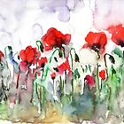 Field of poppies by faruk koksal