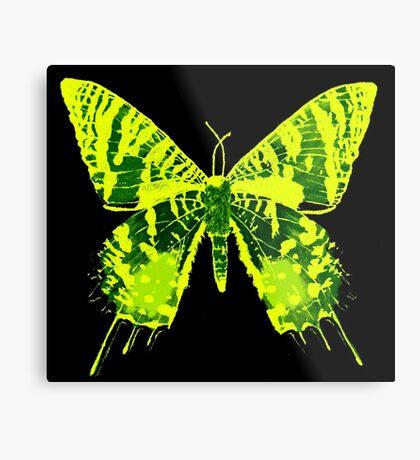 Sunset Moth Yellow Metal Print