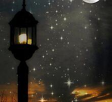 Moon lite night as the sun sets ©  by Dawn M. Becker