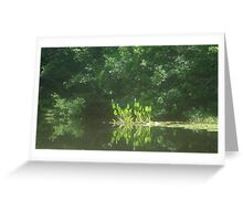 PICKEREL WEED ISLAND Greeting Card