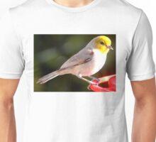 YELLOW HEADED WARBLER ON HUMMINGBIRD PERCH Unisex T-Shirt