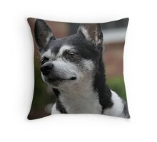 Soaking up Sunshine Throw Pillow