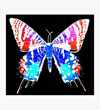 Inverted Sunset Moth Photographic Print
