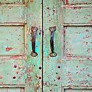 behind the green door  by richard  webb