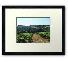 Oregon Wine Framed Print