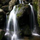 Ladore Falls by simassey81