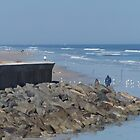 Rocks and Birds on the Beach by Eileen Brymer