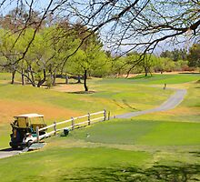 Desert Hills Golf Course by Barbara Manis