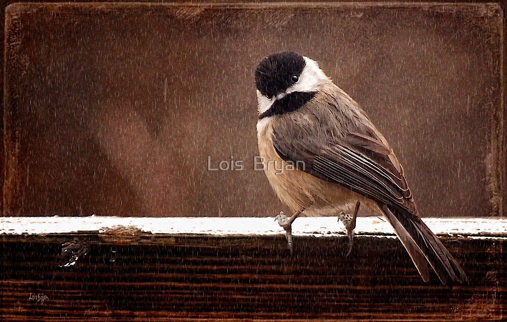 Kerflustered! by Lois  Bryan