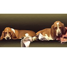 Wrigley and Bailey Photographic Print