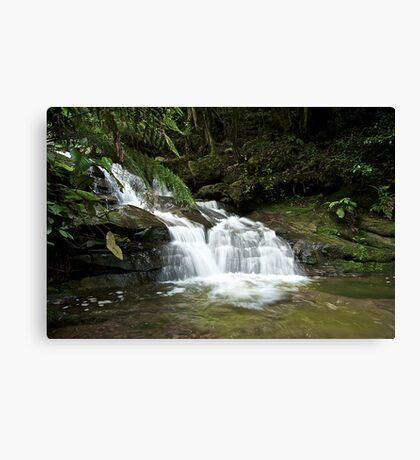 Leura cascade  Canvas Print