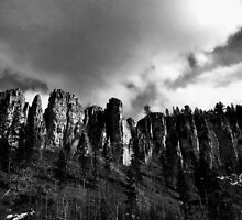Spearfish Canyon - South Dakota by Joe Miller