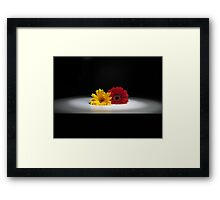 Duo in the Limelight Framed Print