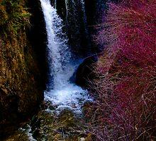 Roughlock Falls - Spearfish, South Dakota. by Joe Miller